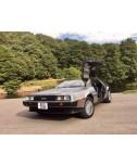 DeLorean For Sale - VIN 1373