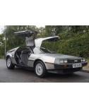 DeLorean For Sale by Auction - VIN 4872