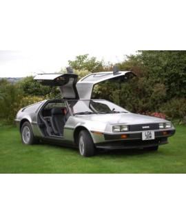 DeLorean For Sale - VIN 3928