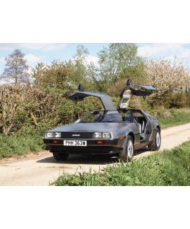 DeLorean For Sale by Auction - VIN 4526