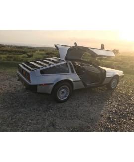 DeLorean For Sale - VIN 5335