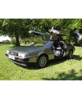 DeLorean For Sale - VIN 3863