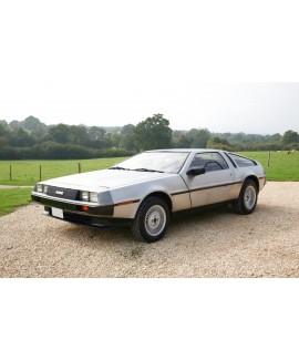 DeLorean For Sale by Auction - VIN 11102