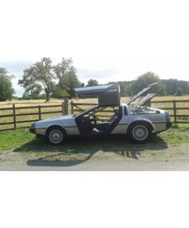 DeLorean For Sale - VIN 10989