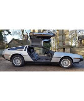 DeLorean For Sale - VIN 2959