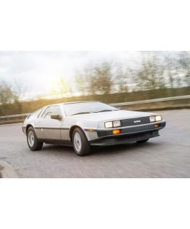 DeLorean For Sale - VIN 7176