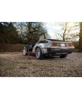 DeLorean For Sale - VIN 7176